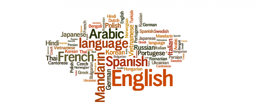 Languages MS Project